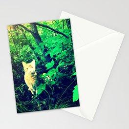 Sherkan Stationery Cards