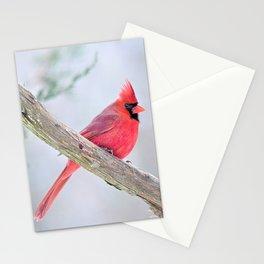 Grumpy Cardinal Stationery Cards
