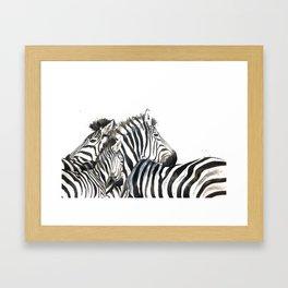 Zebra family Framed Art Print