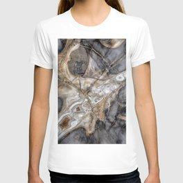 Petrified wood 3264 T-shirt