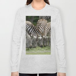 Zebra 009 Long Sleeve T-shirt