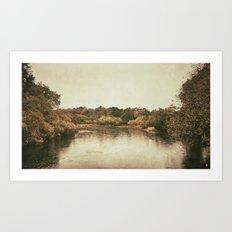 Lake in Ireland Art Print