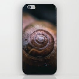 A Snail Home iPhone Skin