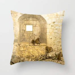 Planet of the Apes Throw Pillow