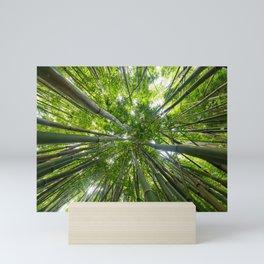 Looking Up A Bamboo Forest Canopy, Haleakala, Maui, Hawaii Mini Art Print