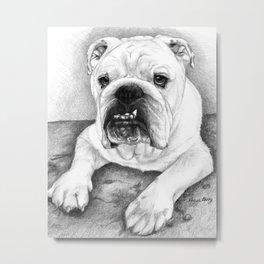 The Bull Dog Metal Print