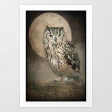 Tawny Brown Owl Art Print
