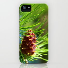 Spring Larch Macro Close Up iPhone Case