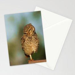 Corujas Stationery Cards