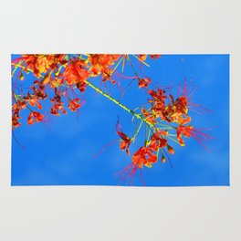 Branch and Sky Rug
