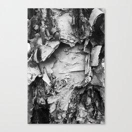 Dark Bark Canvas Print