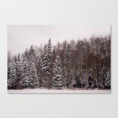 Winter 231 Canvas Print