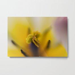 Yellow pistil Metal Print