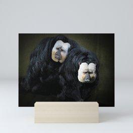 White Faced Saki Monkeys  Mini Art Print