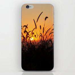 SoCal Sunset iPhone Skin