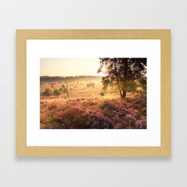 Sun and heather Framed Art Print