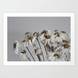 Dead things are beautiful too (2) Art Print