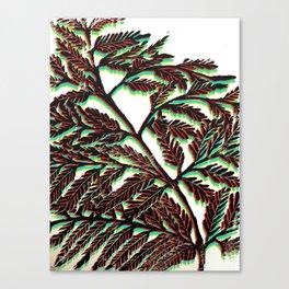 Fern Fronds III Canvas Print