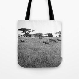 Impala in the grass Tote Bag