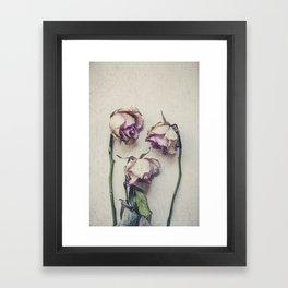 Vintage Roses II Framed Art Print