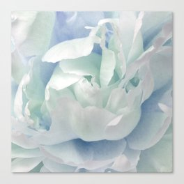 Peony in Blue White Canvas Print