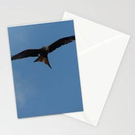 Fierce Red Kite Stationery Cards