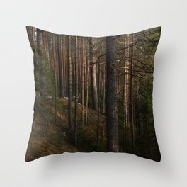 Taiga forest on a sunny spring day. Throw Pillow