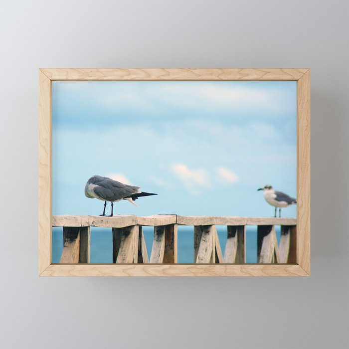 Bird collection _02 Framed Mini Art Print