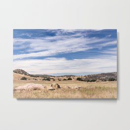 Dry meadows and rolling hills near Julian, CA Metal Print