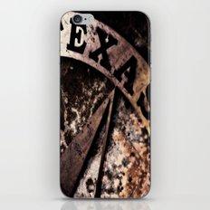 Republic of Texas iPhone & iPod Skin