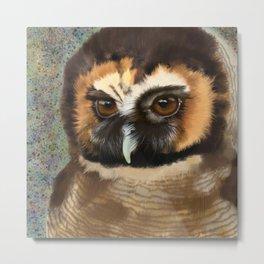 Brown Wood Owl  Metal Print