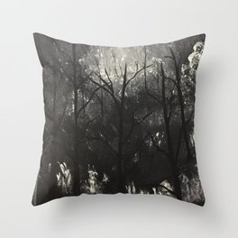 Moonlit Whispers Throw Pillow