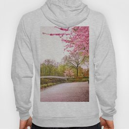 Cherry Blossoms Romance Hoody