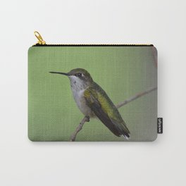 Ruby Throated Humming Bird At Rest Carry-All Pouch