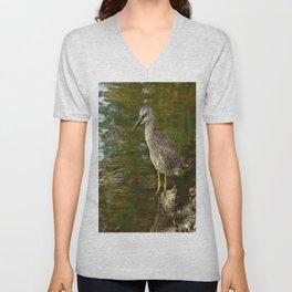 Juvenile Yellow Crowned Night Heron Unisex V-Neck