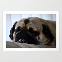 Pug Tired Art Print
