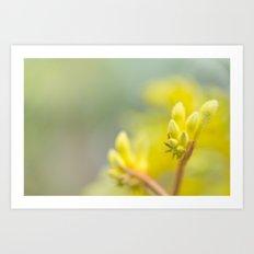 Bright Yellow Kangeroo Paw Art Print