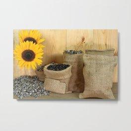 Sunflower, seeds, burlap bags, wooden table Metal Print