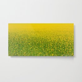Mustard Field (of Yellow and Green) Metal Print