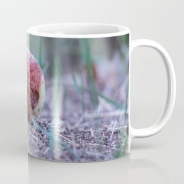 The wicked queen bad apple Coffee Mug