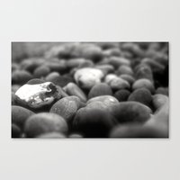rocky Canvas Prints featuring Rocky by Jade Collins