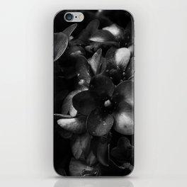 fiore a cascata iPhone Skin