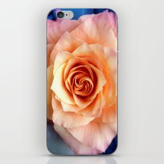 A Rose for Rosie iPhone & iPod Skin