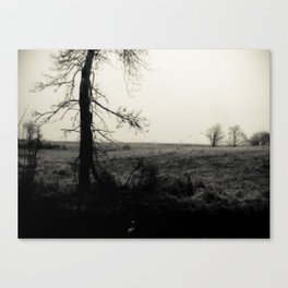 Desolation 6 Canvas Print