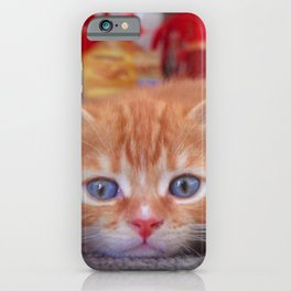 Cleo the Christmas Cat iPhone Case