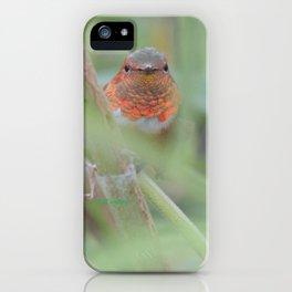 An Allen's Hummingbird Amid Mexican Sage iPhone Case