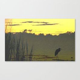 In the wings Canvas Print