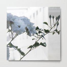 Silhouette Rose 2 Metal Print