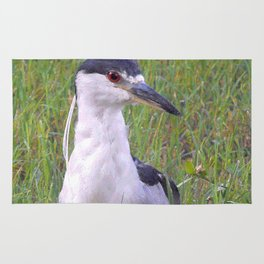 Night Heron in the Green Grass Rug