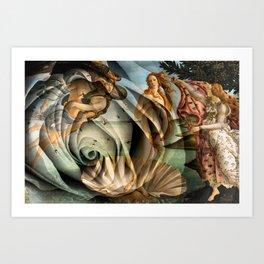 Venus Rose Art Print